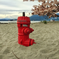 Fire hydrant in sand on Jerricho beach (Vancouver,BC)