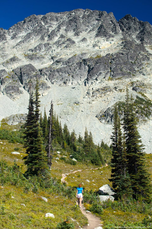 Blackcomb Meadows Trail