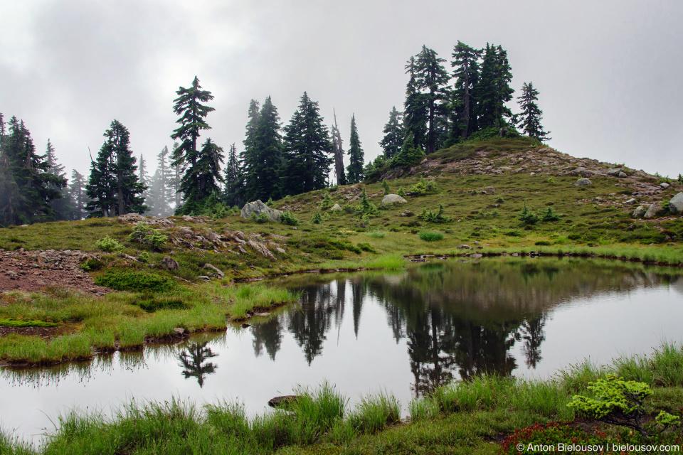 Elfin Lakes trail (Garibaldi Provincial Park, BC)