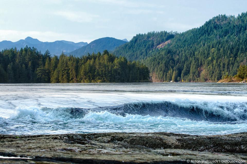 Skookumchuck Narrows: На жаргоне индейцев Чину «скукум-чук» означает сильная вода.