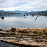 Парк выходит к одноименному озеру это питьевая вода города, однако это вам не Ванкувер где к резервуару с питьевой водой не подойти и на 50 метров — здесь вполне себе можно и купаться и на моторке погонять.