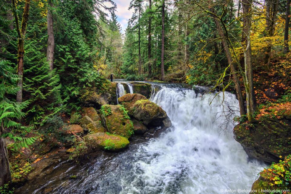 Whatcom Falls (Bellingham, WA)