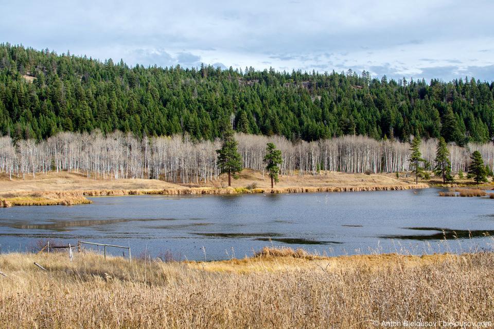 Озеро на трассе Princeton-Kamloops Highway 5A