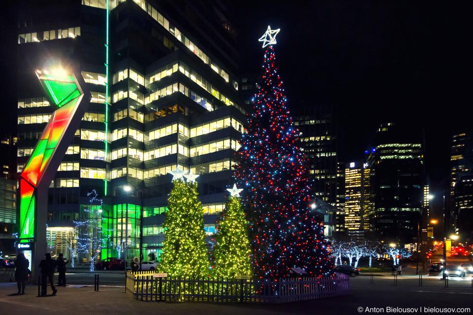 Главная городская ёлка Ванкувера