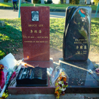 15 фактов, доказывающих что Брюс Ли был сверхчеловеком