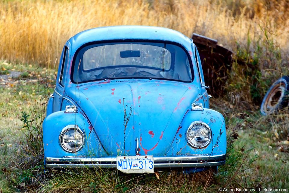 Volkswagen Beetle Coalmont, BC