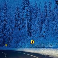 Второе шоссе из сельской местности быстро забирается на перевал Стивенс (1,238 м).