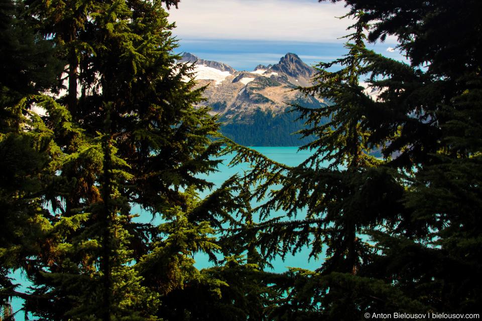Garibaldi Lake from Taylor Meadows trail