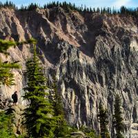 Или ниже, понад каньоном, на противоположной стороне которого то и дело с гулким эхом сыплются камни.