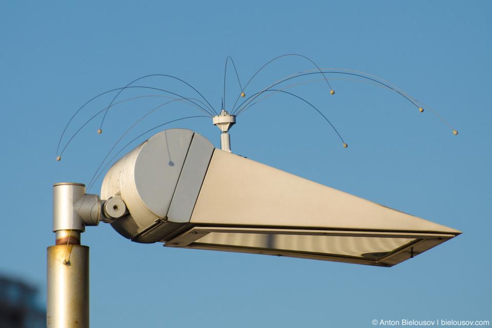 New bird anti-perching device (Seattle, WA)