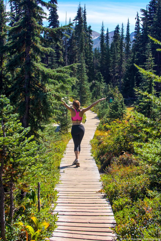 Taylor Meadows trail (to Black Tusk and Garibaldi Lake)
