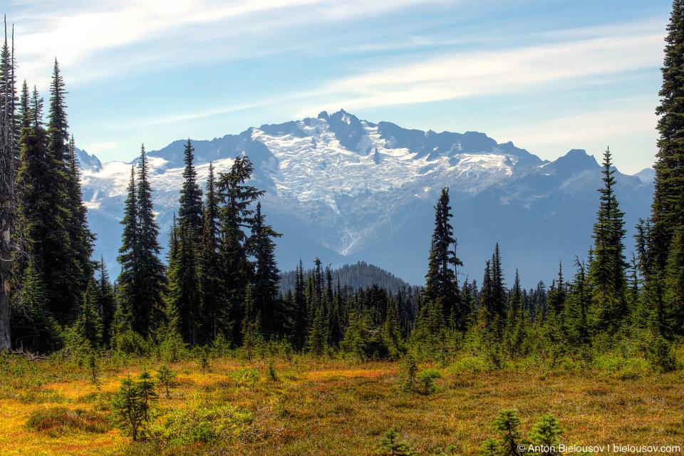 Taylor Meadows trail: Вид на горы и ледники сзади заставляет оборачиваться каждые несколько секунд.