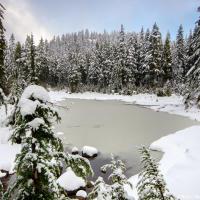 Красота, здесь утром, хотя до снега я дошел только к половине десятого.