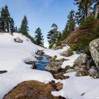 Ручьи талой воды еще скованы ночным льдом.