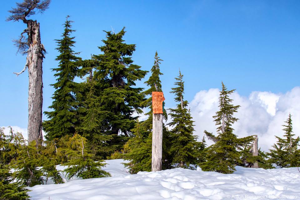 Mount Seymour Second Peak