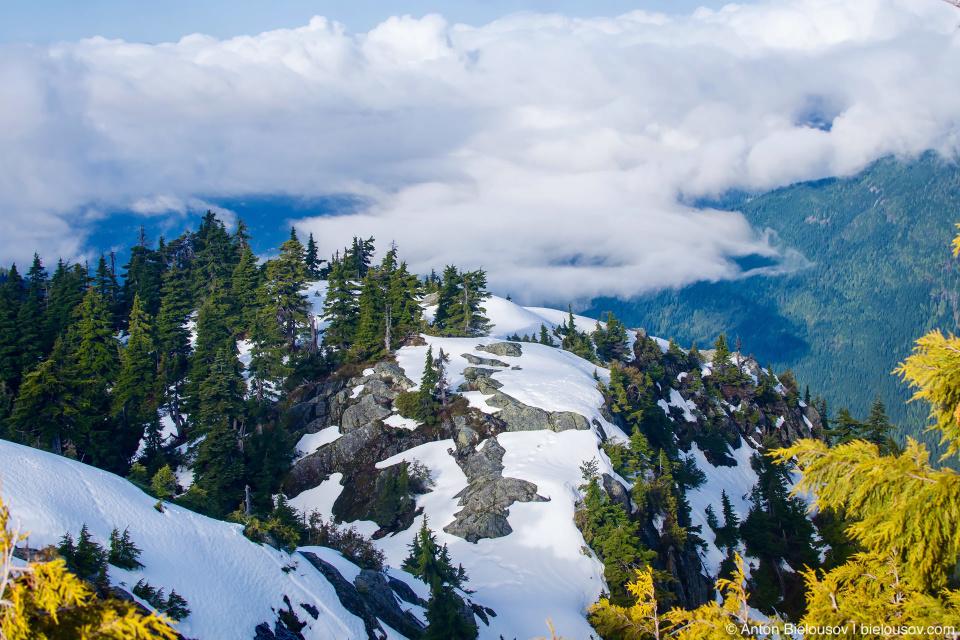 Вершина горы Сеймур (Seymour Mountain)