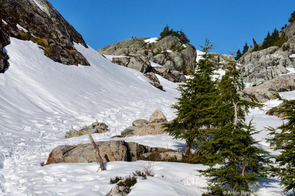 Тропа на вершину Сеймур (Seymour Mountain) в снегу
