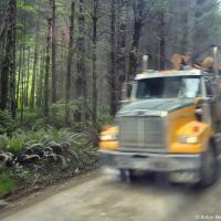 Единственное развлечение в дороге — пропускать несущиеся без тормозов лесовозы. В Северной Америке их тоннаж может достигать 36 тонн — на гравийной дороге да еще и под уклон тормозить на этой штуковине бесполезно. Поэтому водитель автобуса сканирует их радиочастоту, прячась в кустах когда летит очередной лесовоз.