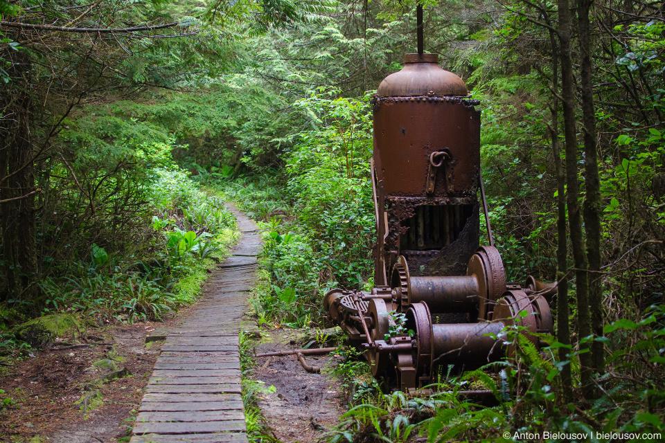 Steam donkey (west coast trail)