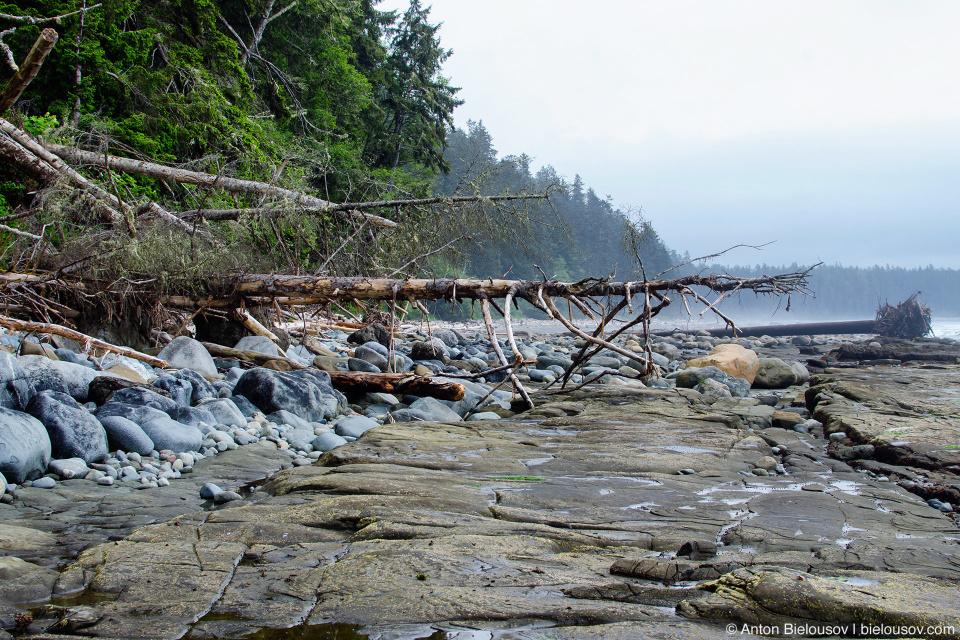 Пляж на West Coast Trail