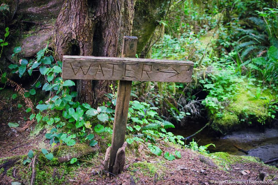 Источник воды на West Coast Trail