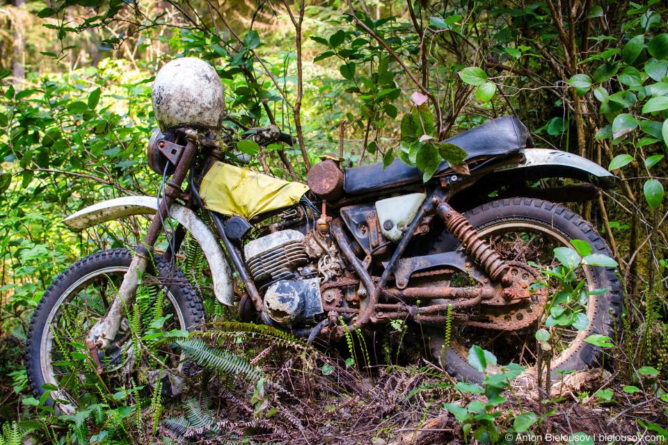 Брошенный мотоцикл на тропе West Coast Trail