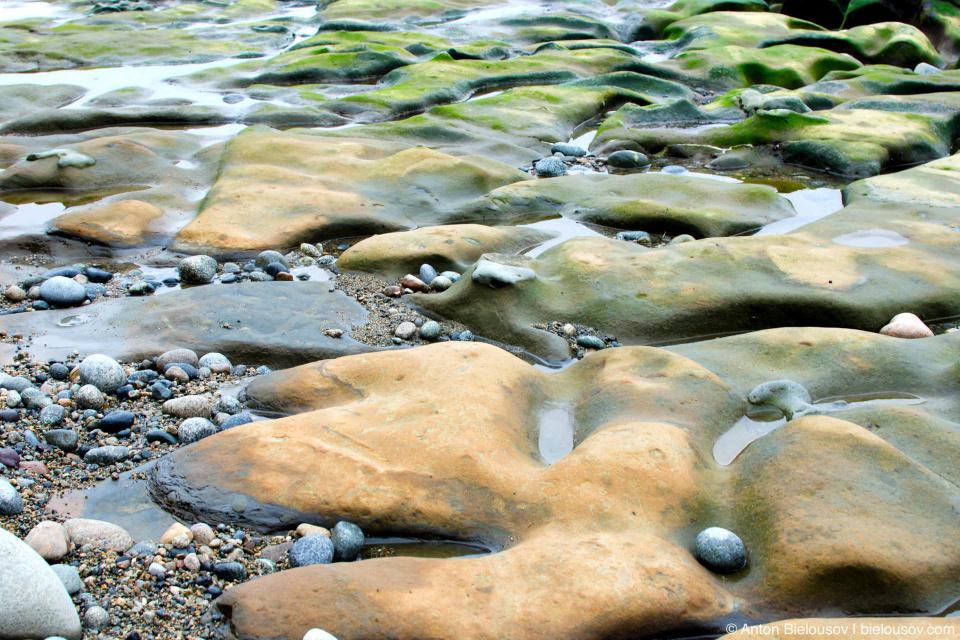 West Coast Trail Beach Rocks