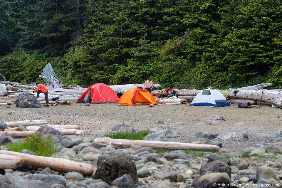 Cribs Creek Campsite — West Coast Trail