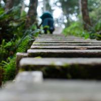И сходу встречает нас лестницами.