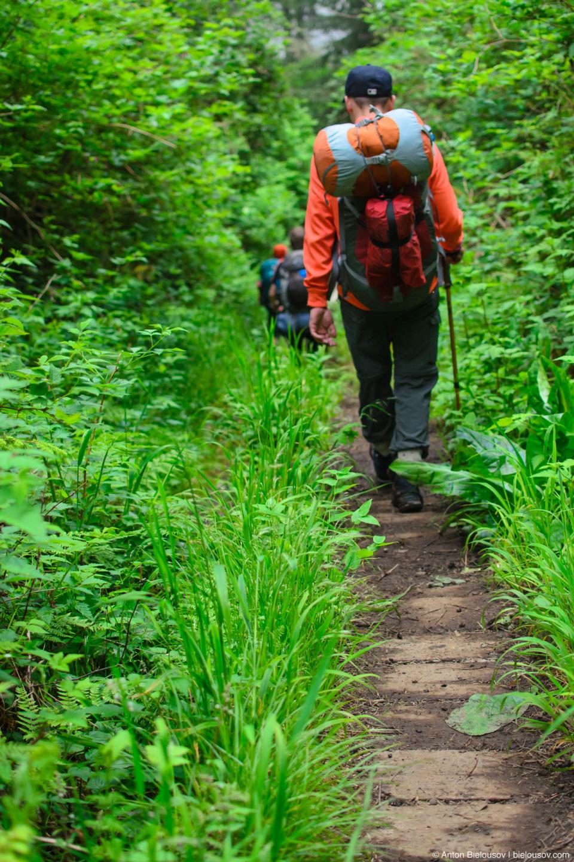 Тропа West Coast Trail