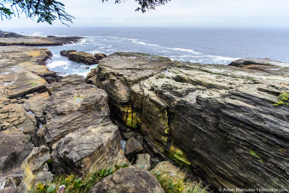 West Coast Trail Pacheta Point