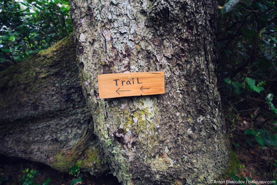 Указатель на West Coast Trail
