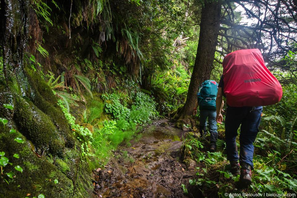 West Coast Trail mud