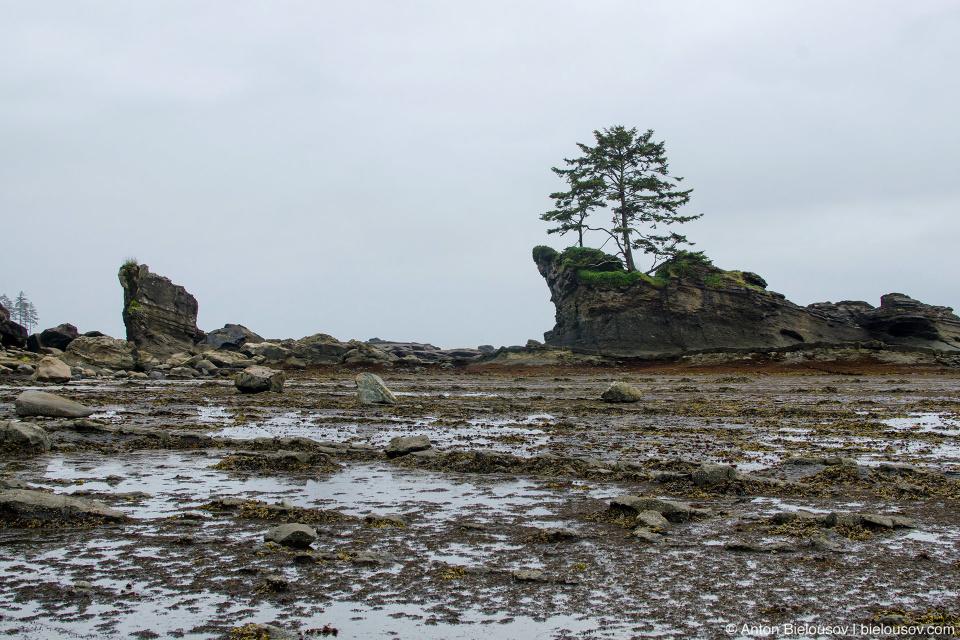 Dare Point на West Coast Trail
