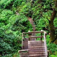 А вот ведущие к ним обоим лестницы уже не так популярны.