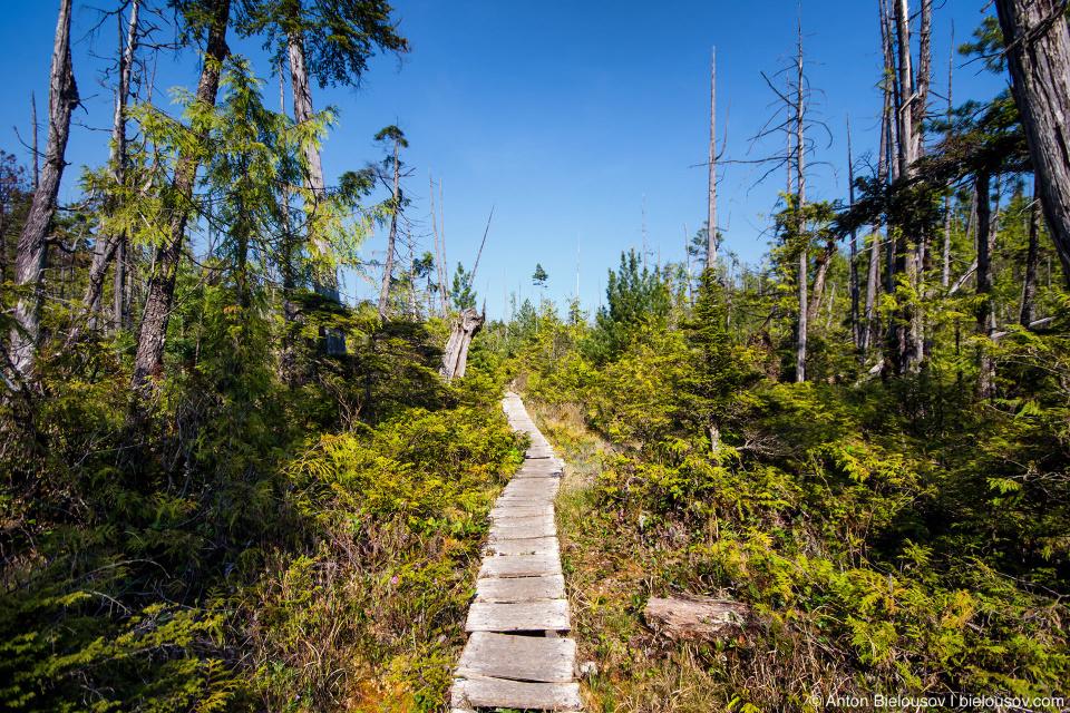 West Coast Trail, 57km