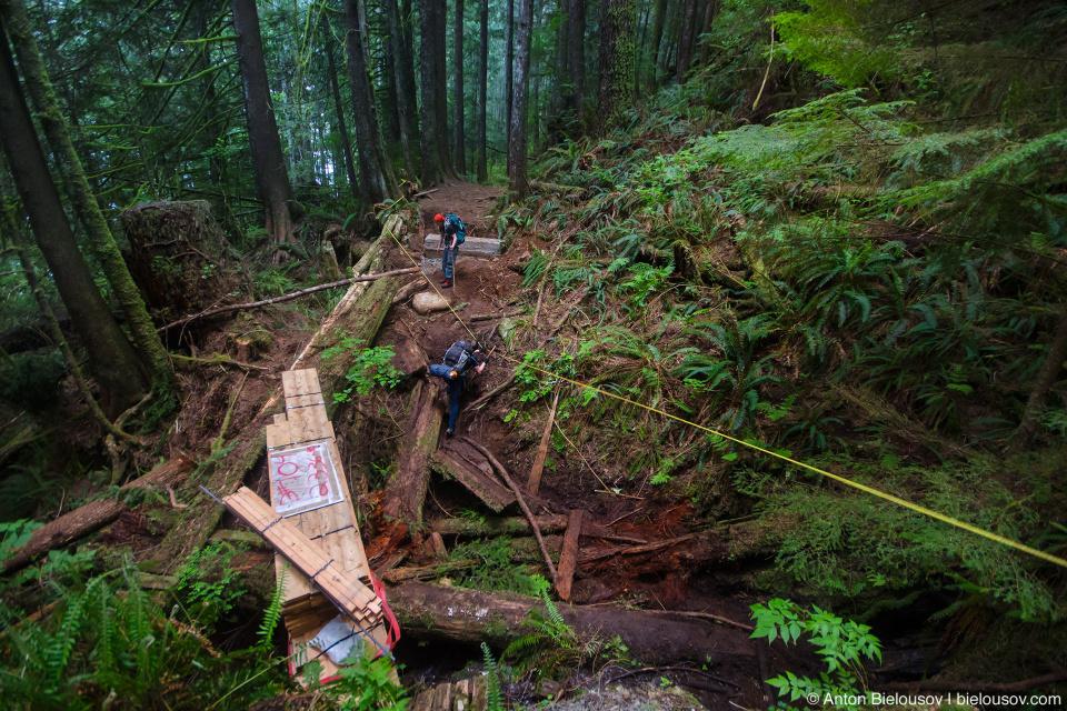 Ремонт моста на West Coast Trail