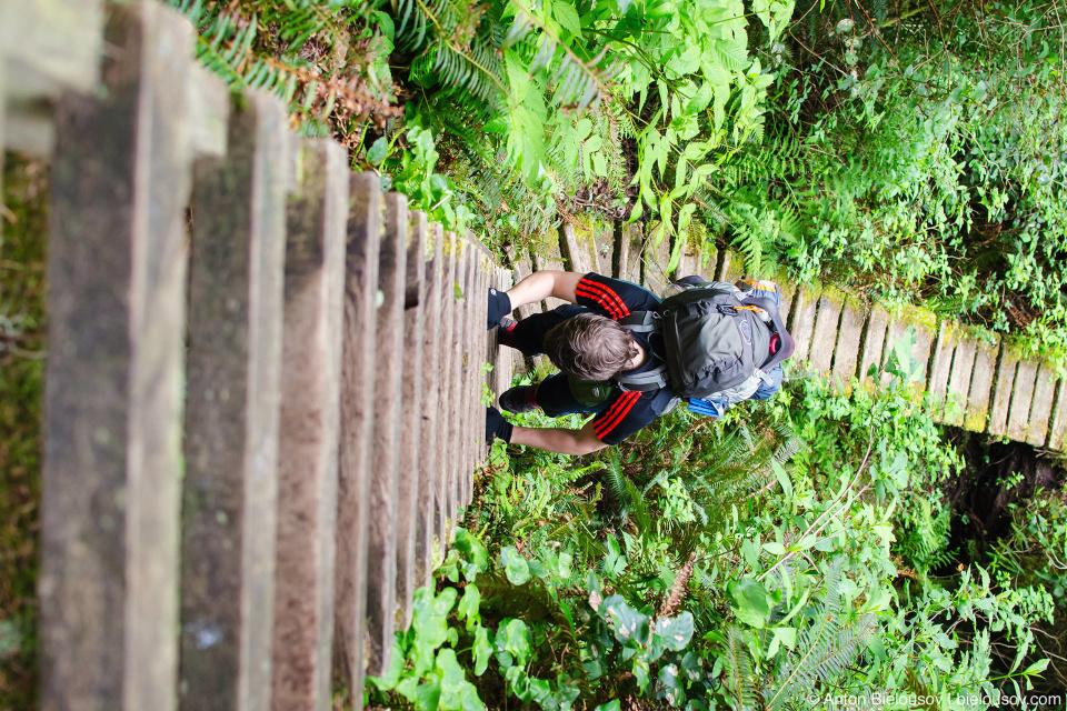 West Coast trail: лестницы на Carmanah Point