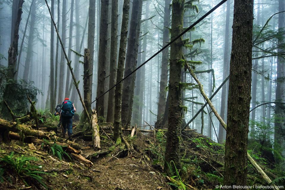 Найвысшая точка на маршруте West Coast Trail, 71km