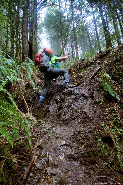 Последняя секция West Coast Trail