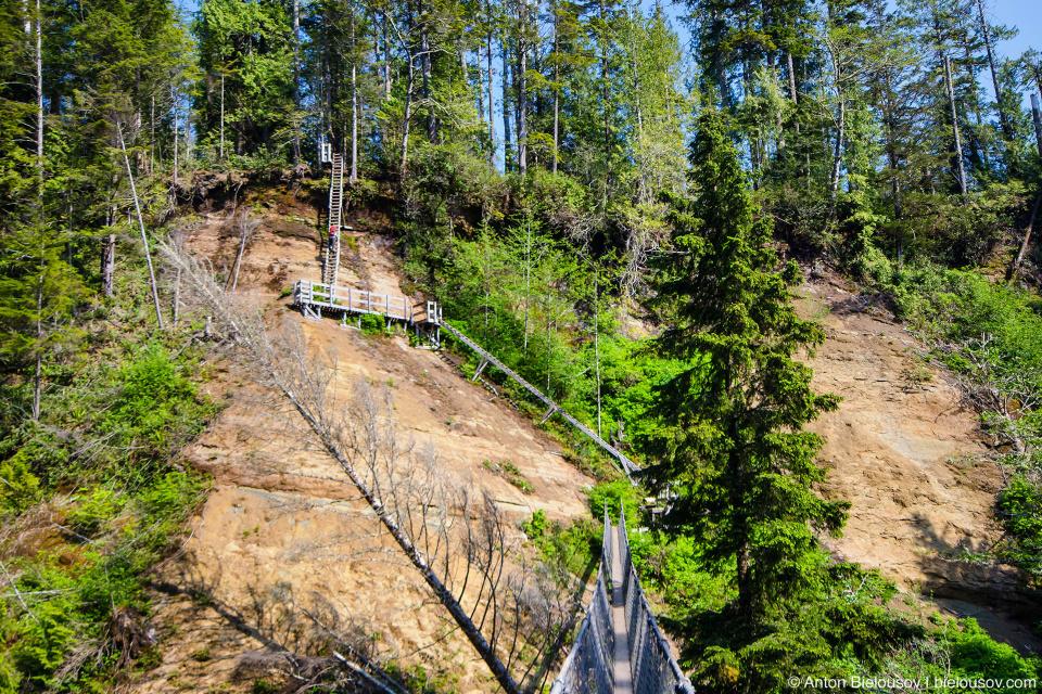 West Coast Trail: Logan Creek ladders