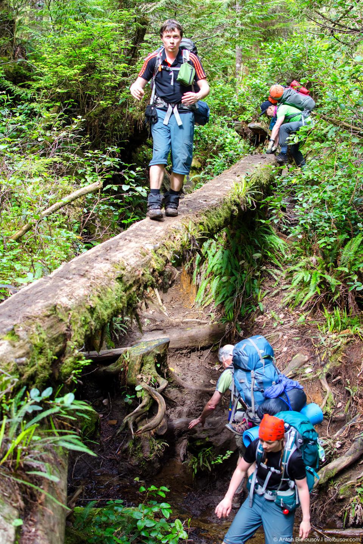 Эстакада на West Coast Trail