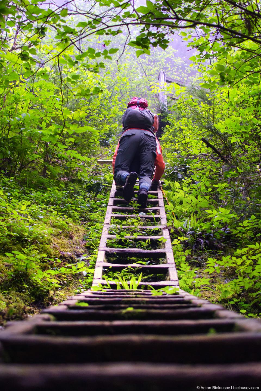 Лестница с переменным углом наклона на West Coast Trail