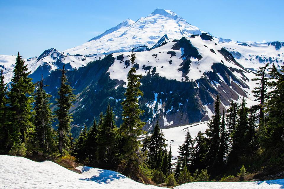 Mount Baker as seen from Artist Point