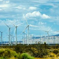 В Калифорнии очень развиты альтернативные источники энергии — не зря там Шварц держится за солнечные батареи на промо-фотках. Таких обширных ветряных ферм как здесь я еще не видел.