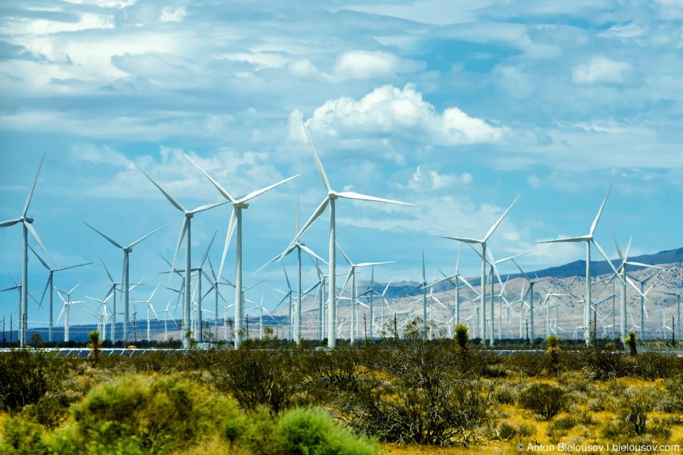 Ветряные мельницы. Калифорния.