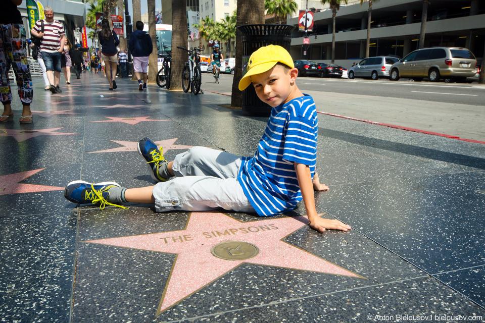 Аллея Славы в Голливуде: Звезда The Simpsons