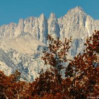 Если ехать по 395 шоссе из Национального парка Йосемити в сторону Палм-Спрингс, то аккурат перед поворотом на долину Смерти, в районе городка Одинокая Сосна (Lone Pine, CA), где в любом случае стоит остановится у последней на много сот миль бензозаправки, возвышается острый пик гору Уитни (Mount Whitney).