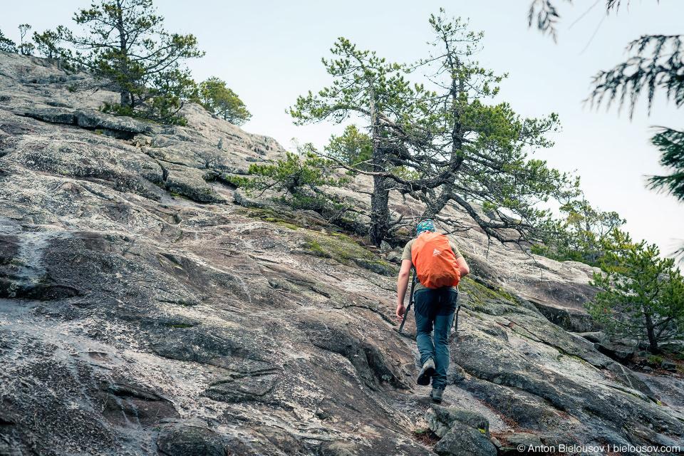 Hiking mount Chief Stawamus First Peak