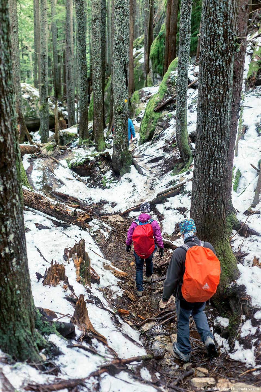 Снег на тропе на третий пик Stawamus Chief